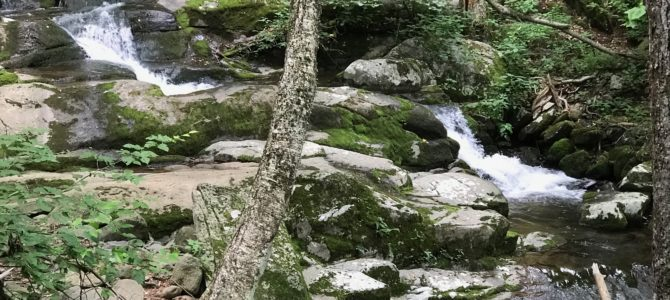 Trip Report: Shenandoah Valley